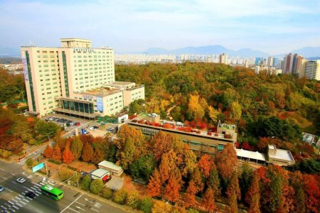 Find Surgical removal  of the brain cyst  prices at Kyung Hee University Hospital at Gangdong (KUIMS)